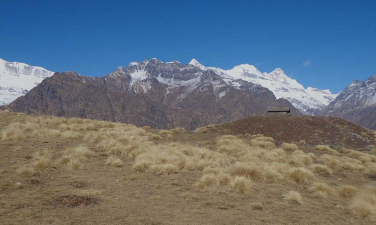 Winter Trek: Sarmul – Pakuwa Top Trek