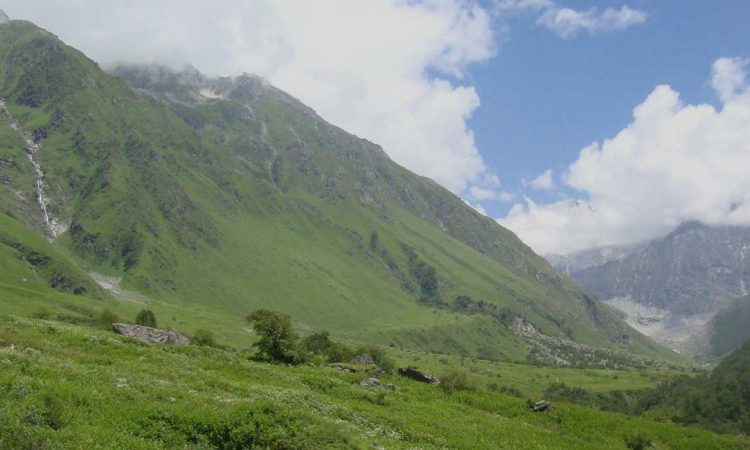 Valley of Flowers and Hemkund Sahib Trek